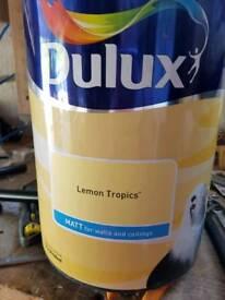 Dulux paint 2.5l