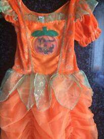 Girls 3-4years pumpkin outfit