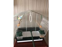 Small bird cage as seen. Pick up only boothferry.