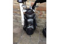 Wilson X31 Muscle back Golf set - with bag included