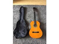 Acoustic Guitar With Carry Bag (new condition)