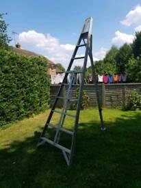 Tripod ladder 9 tred