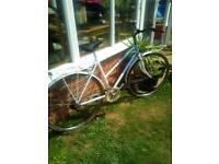Ladies sports bike collection wymondham
