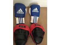 Adidas gloves and UFC training pads
