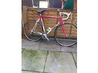 giant racer bike good condition