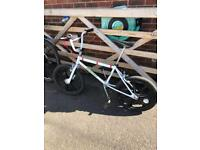 Raleigh Mag burner old school BMX