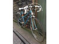 Peugeot Riviera vintage steel frame bike carbolite