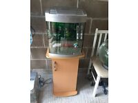 40l fish tank Aqua start 340 full set up with stand light heater gravel ornament all work and in pic
