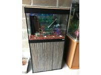 90l fluval Roma fish tank full set up with stand filter heater 2 x light gravel ornament all work