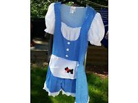 Adult fancy dress costume Dorothy from The Wizard of Oz