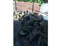 Oak tree logs for sale in kenton