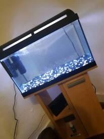 2Ft Fishtank & Stand