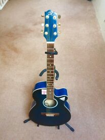 Electro Acoustic Guitar Stunning