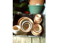 28 x assorted terracotta plant pots