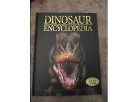 Dinosaur Encylopedia- hardback A4 book - £2