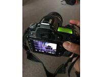 Nikon D90 and Tamron Lens
