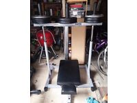 Vertical Leg Press (Powerline) with Olympic Adapter Sleeves & Optional Weights