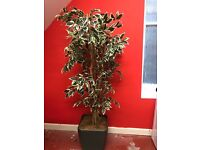 Beautiful large artificial plant in pot