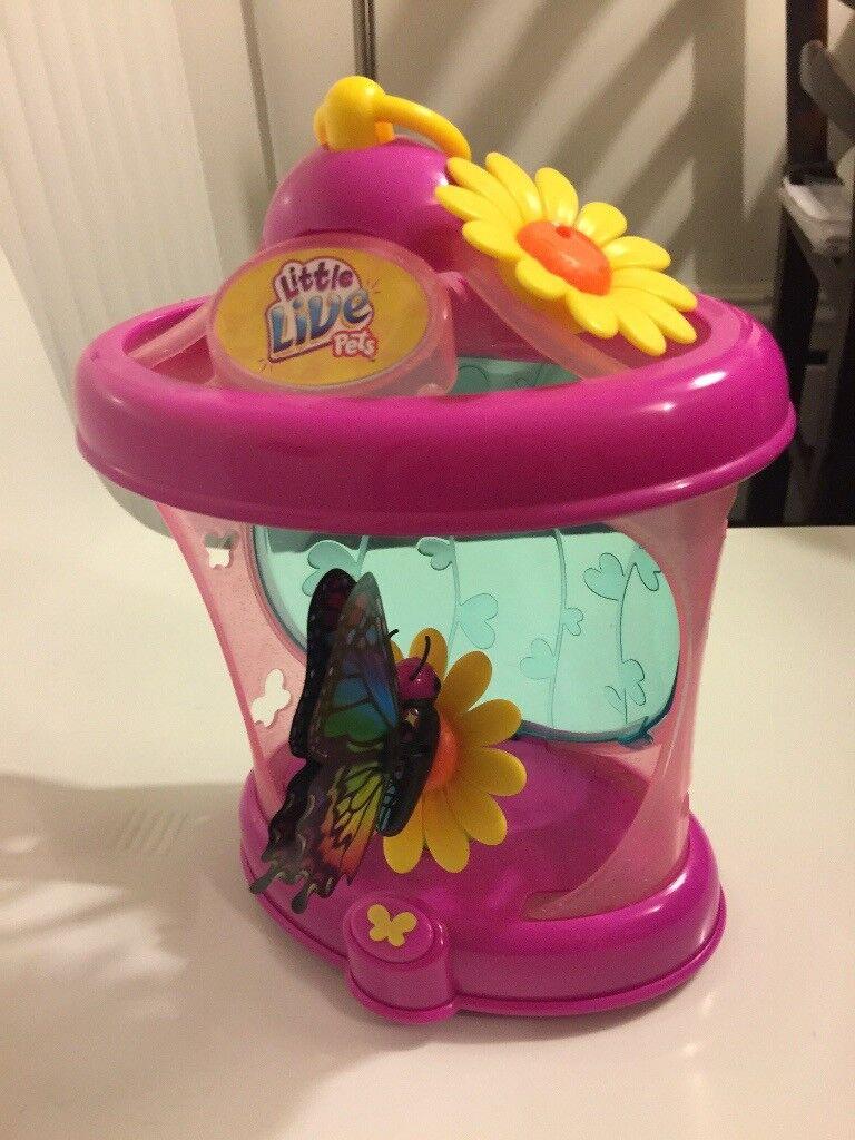 Little live pets- Butterfly