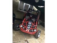 2 seater off road buggy