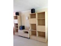 Living room large TV unit