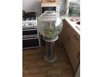 60 litre biorb tabk with stand