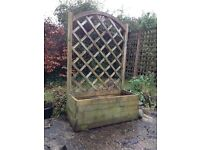 Pine planter with trellis