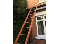 13ft Heavy Duty Ladders