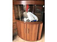 Juwel trigon 190 marine tropical fish tank aquarium