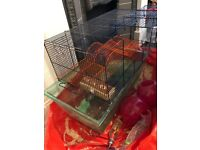 Gerbil Cage home hamster small furry pet animals large