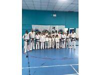 Taekwon-do/Karate classes