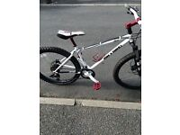 On one inbred 18 inch mountain bike