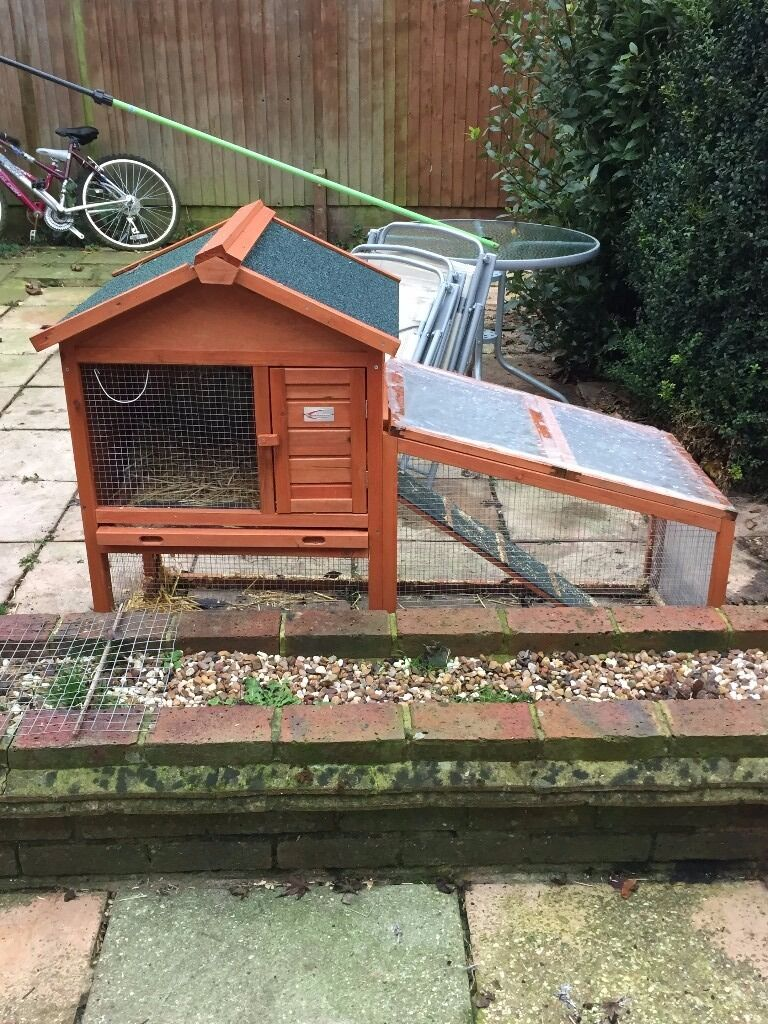 Thinking of buying a Rabbit- look no further for a hutch !
