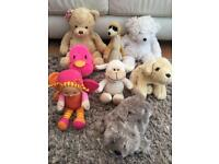 8 soft toys. £2 the lot. Torquay or can post