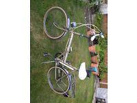 "Raleigh folding bike 16"" frame"