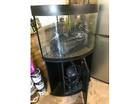 Aqua One Corner tank and cabinet, 150l full aquarium kit