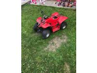 Quadzilla buzz 50 spares repairs