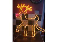 Reindeer Xmas light