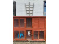 Pets at home Guinea pig/rabbit double outdoor hutch