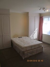 King size room to let Golders green