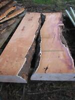 Yew Wood Slabs For Sale
