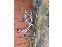 Giant expression silver ladies bicycle for sale
