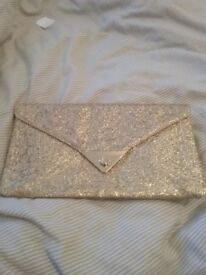 Clutch bags and purse