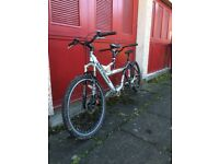 Barracuda tandem for sale