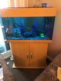 Fish tank and fish will £100s of pounds of extras