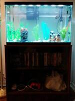 30 gallon fish tank& everything to go with it