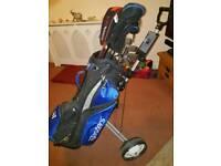 Golf club set (lady's)
