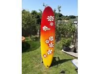 Mini Mal 7ft 4 x 21 x 2 3/4 Local Hero surfboard