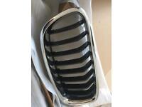 BMW F30 Font Grill