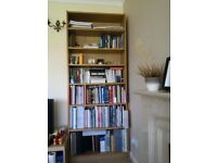 Large Book Shelves £20 ono (Very Good Condition)